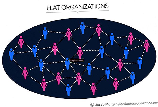 Cosa significa organizzazione orizzontale?